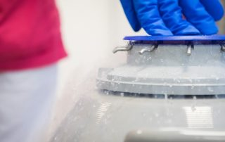 Frysta embryon chans